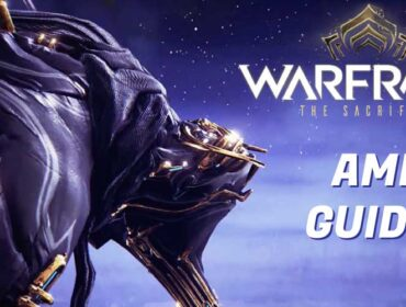 Best Warframe AMP Guide