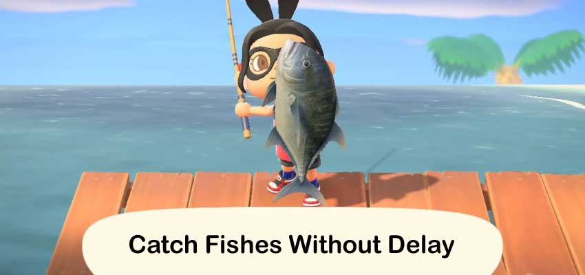Catch fishes without delay